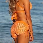 Orange Crush Sport